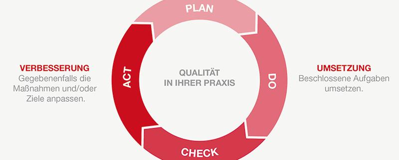 Qualitätsmanagement_Daiichi