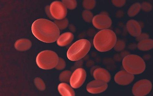 Rote Blutkörperchen auf schwarzem Hintergrund fliegen herum.